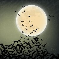 Halloween Background 2 by anitess