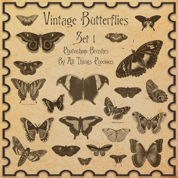 Vintage Butterflies SET 1 Brushes by AllThingsPrecious