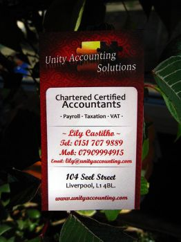 Unity Accounting business card by sebc