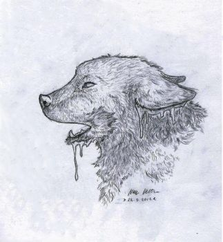 Iced wolf by Comisario