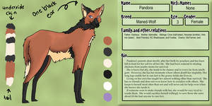 Pandora Ref by DokuPRODUCTIONS