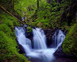 Emerald Falls by enunez