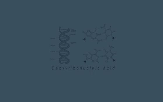 Minimal DNA WP by Daviegunn