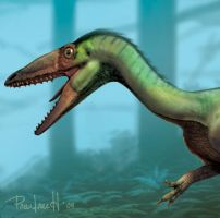 Coelophysis bauri head by pabluratops