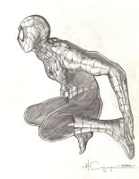 Spider-Man Pencil 1 by ncajayon