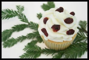 Cranberry White Chocolate Cupcake by FightTheAssimilation