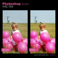 Photoshop Action - Misc 004 by primaluce