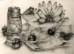 Still life drawing since 2003 #4 by Lilaccu