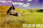 Fields of Gold by SineSpes