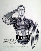 Captain America - Chris Evans by hoganvibe