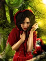 Little Red Riding Hood by LucasValencio