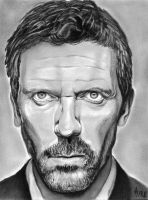 Hugh Laurie by qshera