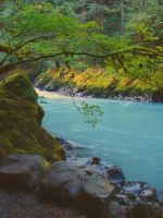 Nooksack River by dsiegel