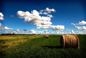 Rolling Bales n Clouds by WhirlingPhoenix