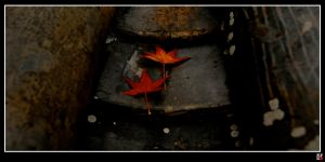 leaves of fall 1 by tensai-riot