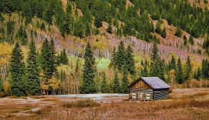 The Little Cabin by montag451