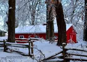 Little Reds Hideaway by 8TwilightAngel8