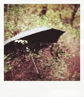 Umbrella-polaroid by 6Artificial6