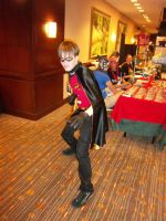 AFest '11 - Robin by TEi-Has-Pants