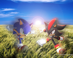 Sonic And Shadow. by Ichgovastolorde