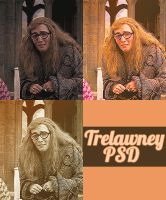 Trelawney psd by ohdear-prongs