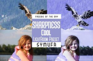 Sharpness Cool Lightroom Presets 0003 by symufa