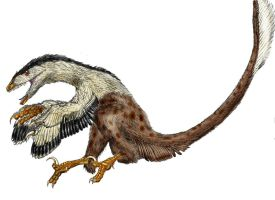 Deinonychus antirrhopus by Durbed