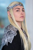 Thranduil by MarcoFiorilli