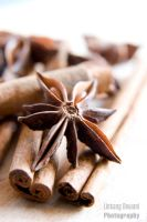 Star Anise and Cinnamon by ldshoot