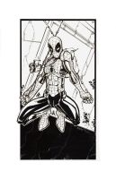 Hi Res Inks Spiderman by rantz