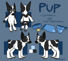 pup ref by puppaws