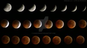 Total Lunar Eclipse of 2010 by xAnacondax