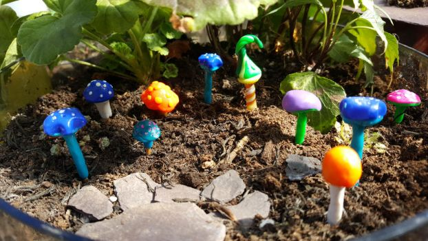 Misc Miniature Mushrooms! by BlodynBach