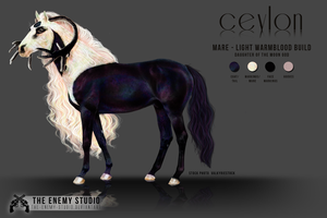 COMMISSION: CEYLON by THE--ENEMY