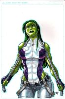 She-Hulk Final 2011 by RAHeight2002-2012