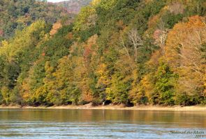 Scenic Delaware River III by Sister-of-the-Moon