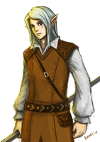 R: Elven Wizard by bchart