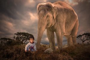 Elephant and boy by elkynz