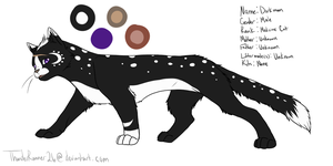Darkmoon Ref Sheet by ThunderRunner26