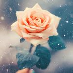 Snow flower by EliseEnchanted