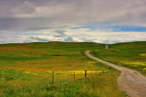 Long and Winding Road by ernieleo