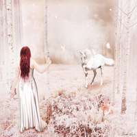 The Enchanted Forest by Lindalees
