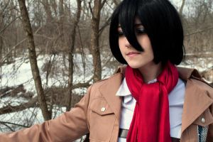 winter photo attack on titan 5 by superjacqui