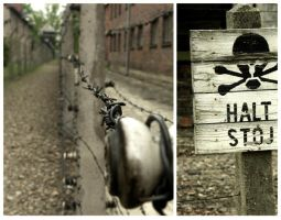 Auschwitz by HackSigns