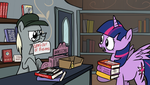 Alicorn Day 6 - The Book Store by petirep