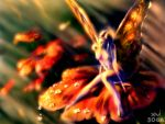 Fairy by Chavito34