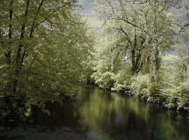 Infrared River by electricjonny