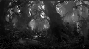 forest by mrssEclipse