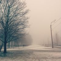 fog - a harbinger of March by Tamias