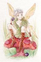 Pixie Boy by Tavicat